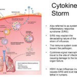 Macrophage Activation Syndrome Cytokine Storm
